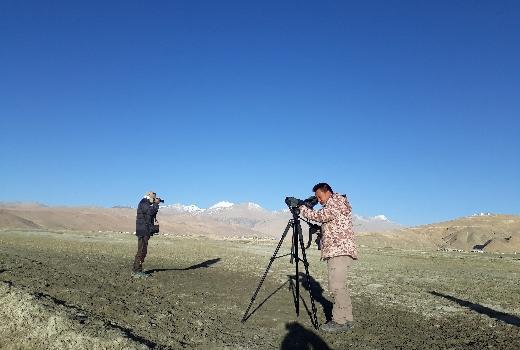Ladakh Bird Festival 2018